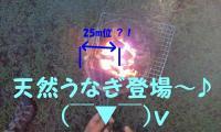 20110728191700.jpg