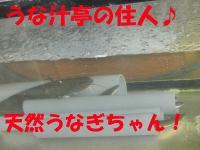 P8120188.jpg