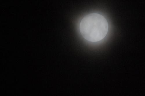 ボンヤリお月様