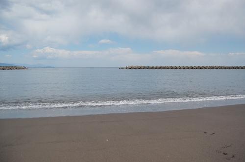 この海を渡って