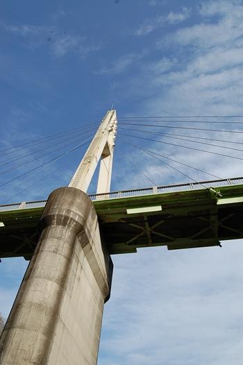 橋の下から