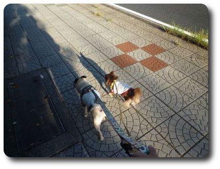 image10_20110906225847.jpg