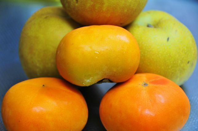 042  柿&梨