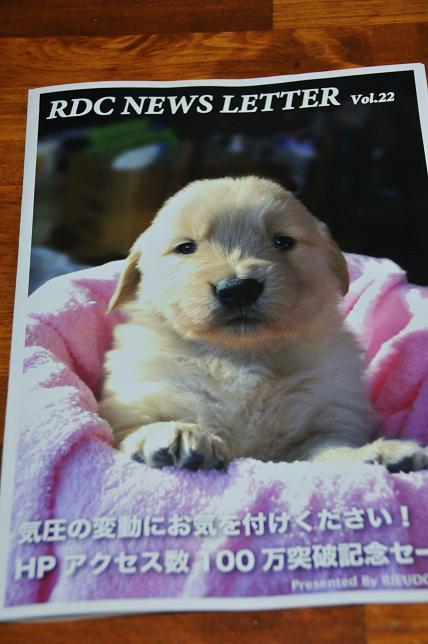 047  ニュースレター