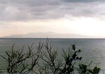 布良からの大島画像
