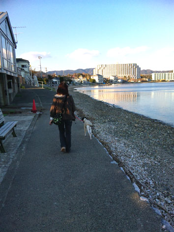 浜名湖散歩携帯1