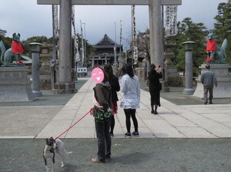豊川稲荷カメラ2