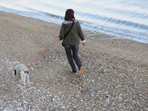 初日浜名湖散歩3