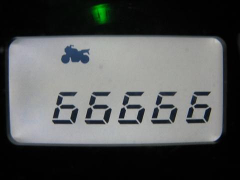 6666662.jpg