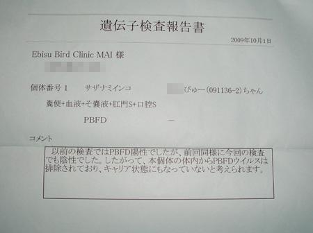 091010-2.jpg