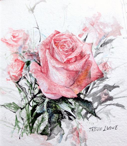 バラ2012新年