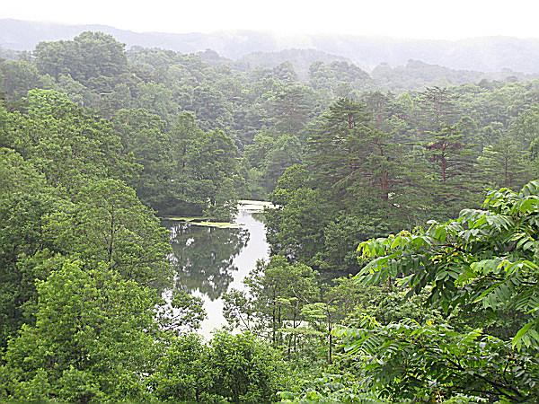 早朝の中瀬沼