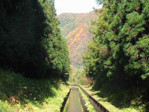 09.10.23.裏山