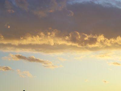 sky0131-2.jpg