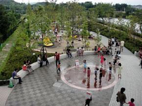 2011-8-21.jpg