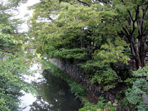 2011-8-26e.jpg