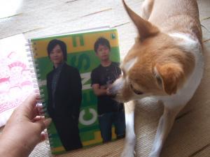 2009_08308月花月&24時間テレビ0014