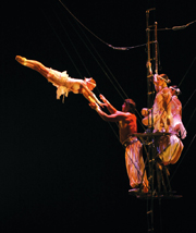 cirque_pic1.jpg