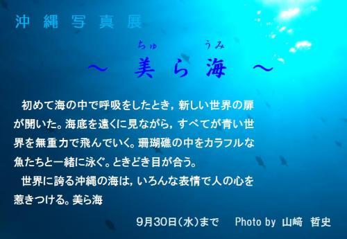 CAXE4D8PA_convert_20090905210902.jpg