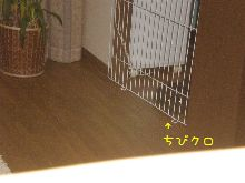 P5240019778.jpg