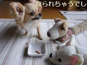 blog2009073102.jpg