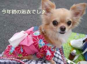 blog2009080601.jpg