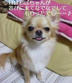 blog2009082803.jpg