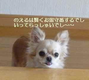 blog20090830.jpg