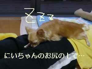blog2009083101.jpg
