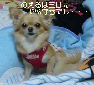 blog2009100205.jpg