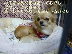 blog2009100302.jpg