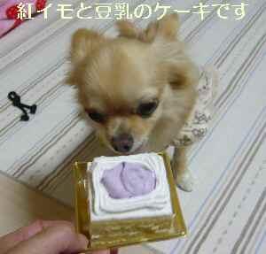 blog2009101405.jpg