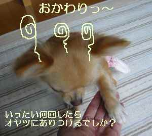 blog2009101904.jpg