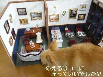 blog2011092806.jpg