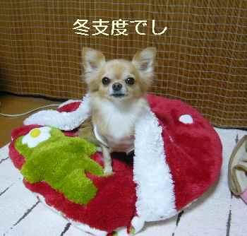 blog2011100301.jpg