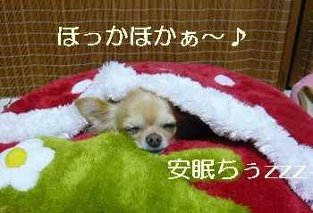 blog2011100302.jpg
