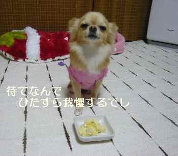 blog2011101404.jpg