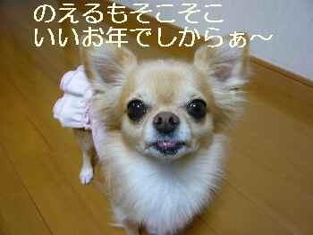 blog2011102407.jpg