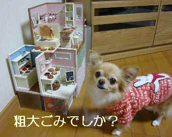 blog2011102802.jpg