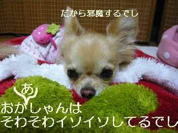 blog2011111703.jpg