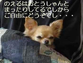 blog2011112301.jpg