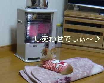 blog2011112405.jpg