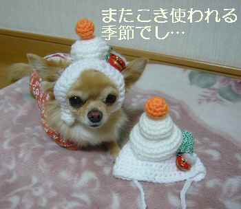 blog2011112703.jpg
