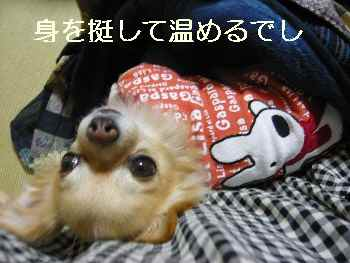 blog2011120201.jpg