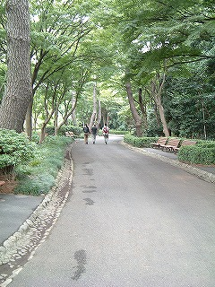 江戸城 松の大廊下