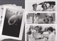 映画スチール「フリッパー」白黒26枚+文字のみ4枚