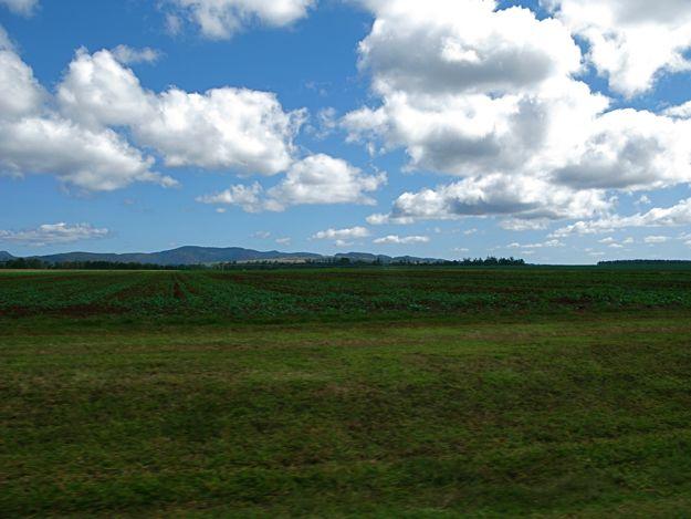 2406アサートン高原畑