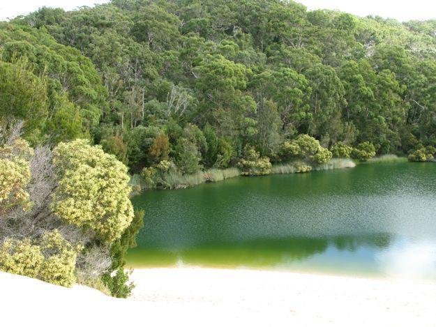 1107ワビイ湖2