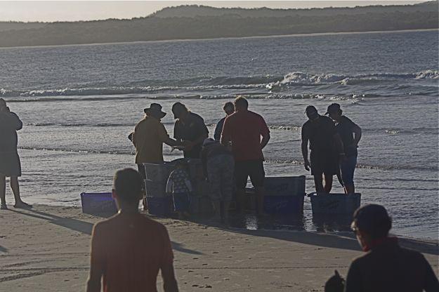 1107魚売海岸