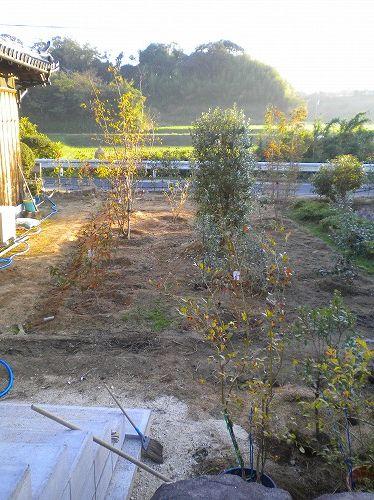 s-秋の庭6